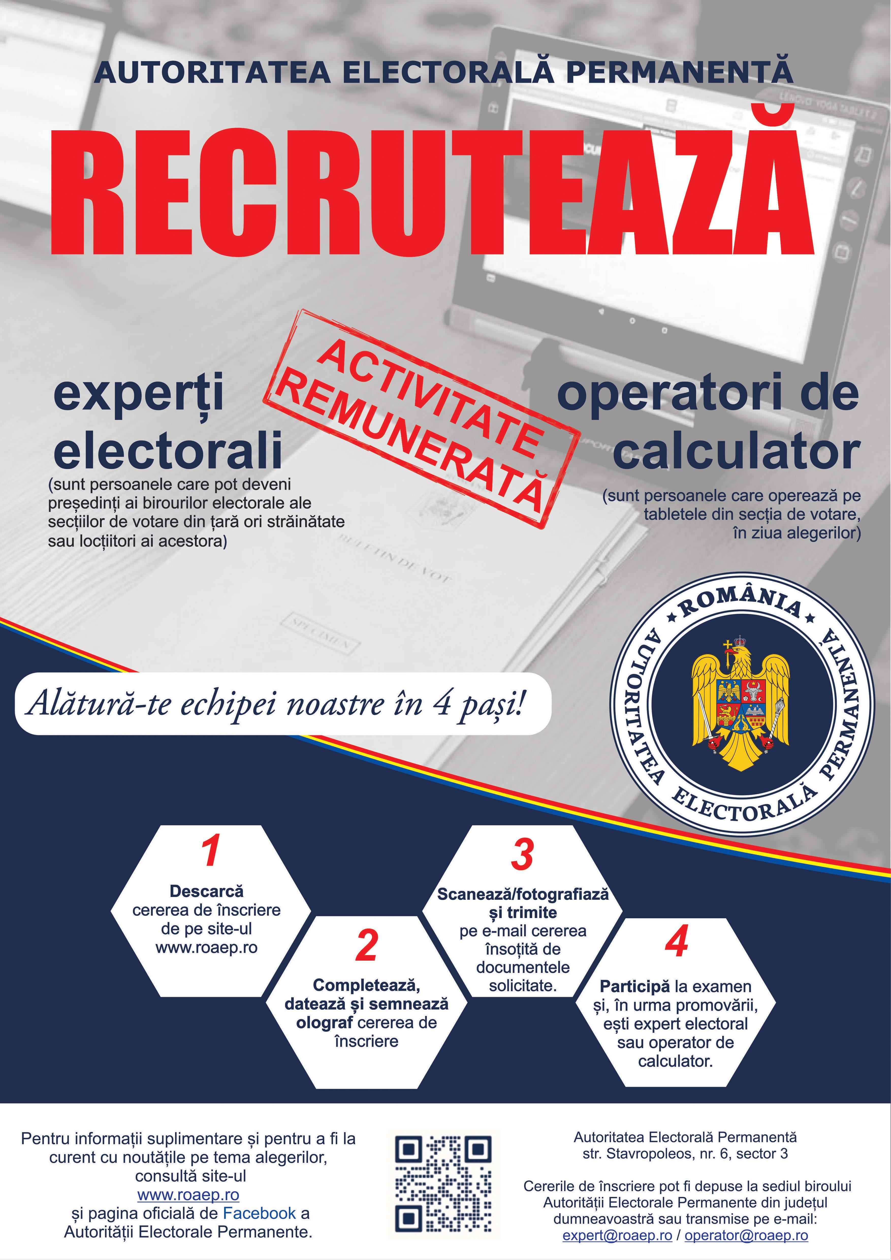 Profesionisti in alegeri